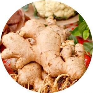 Ginger root@2x 80